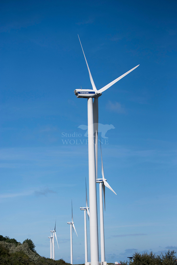 Windturbine op de Maasvlakte, Rotterdam