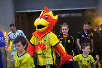 Phoenix mascot Nixie walks out with a fan during the A-League football match between Wellington Phoenix and Western United FC at Sky Stadium in Wellington, New Zealand on Friday, 21 February 2020. Photo: Dave Lintott / lintottphoto.co.nz
