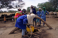 Akadaney, Niger.  Fulani Men and Women Lifting Water from Well to Water Livestock.