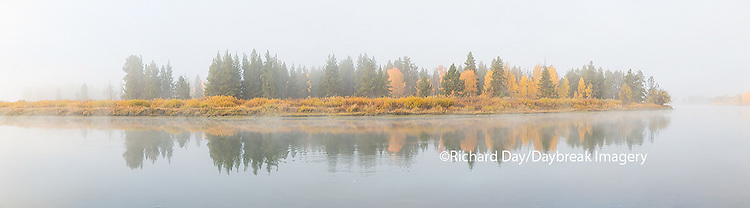 67545-08906 Fall color and fog along the Snake River at Oxbow Bend, Grand Teton National Park, WY