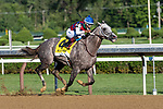 july 25 Volatile #4 ridden by Ricardo Santana jr. wins the Alfred G. Vanderbilt gr 1 at Saratoga race Course CSM