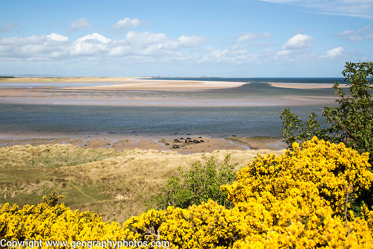 Coastal landscape of tidal sands, Budle Bay, Northumberland coast, England, UK