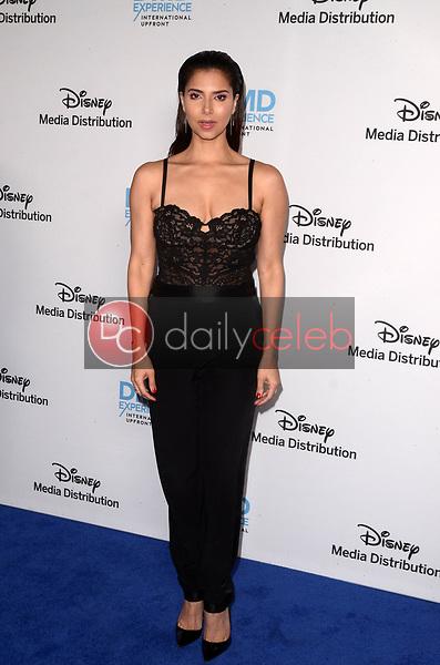 Roselyn Sanchez<br /> at the Disney ABC International Upfront, Walt Disney Studios, Burbank, CA 05-20-18<br /> David Edwards/DailyCeleb.com 818-249-4998