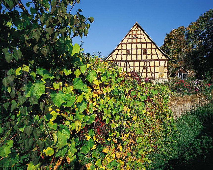 Traditional cottage and garden in the village of Bachlingen near Langenburg in the Black Forest, Bavaria, southern German