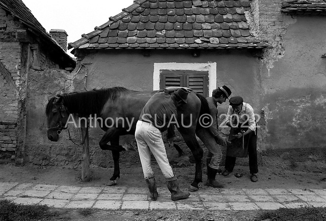 Romania<br />