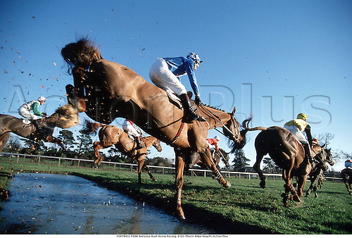 FONTWELL PARK National Hunt Horse Racing, 9102. Photo: Mike Hewitt/Action Plus...1991.water jump.remote.national hunt.steeplechase.steeplechasing.jumps.equestrian sports