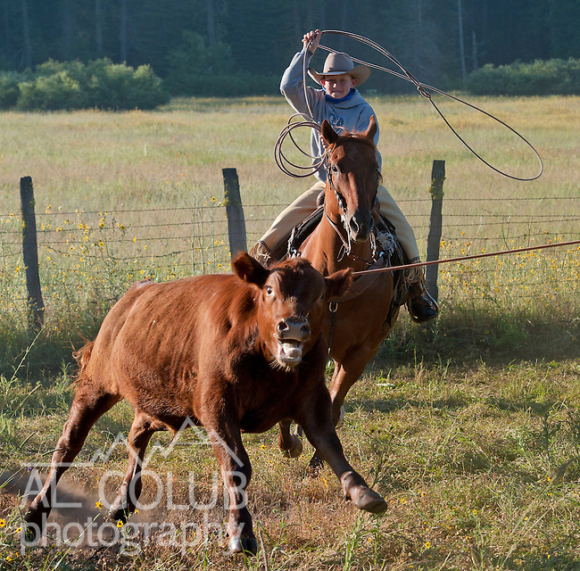 Cowboy Photography Workshop   Erickson Cattle Co. ..Wyatt Hansen ... Photo by Al Golub/Golub Photography