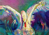 Simon, REALISTIC ANIMALS, REALISTISCHE TIERE, ANIMALES REALISTICOS, innovative, paintings+++++A_SueG_Swan,GBWR153,#a#, EVERYDAY