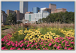 Denver skyline from Civic Center Park. From John's 5th book: &quot;Denver Colorado: A Photographic Portrait.&quot;<br />