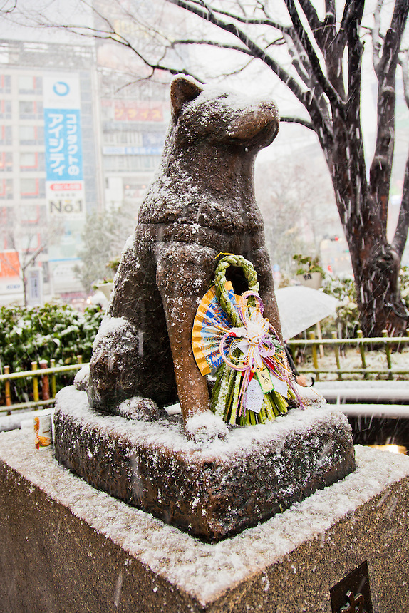 Shibuya`s famous statue of a dog called Hachiko caught in a rare Tokyo blizzard.