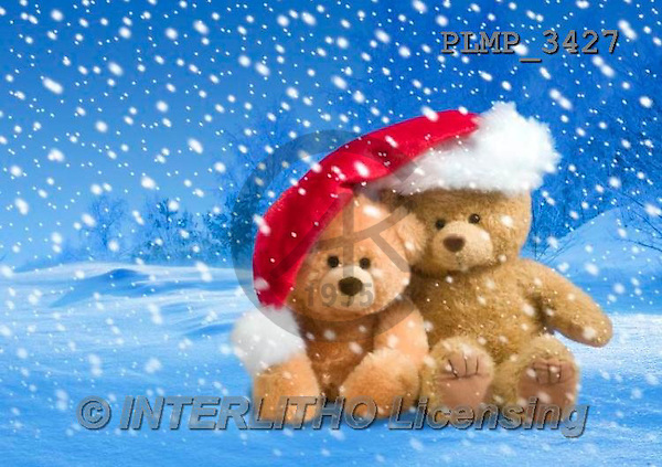 Marek, CHRISTMAS ANIMALS, WEIHNACHTEN TIERE, NAVIDAD ANIMALES, teddies, photos+++++,PLMP3427,#Xa# in snow,outsite,
