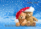 Marek, CHRISTMAS ANIMALS, WEIHNACHTEN TIERE, NAVIDAD ANIMALES, teddies, photos+++++,PLMP3427,#Xa# in snow,outsite,