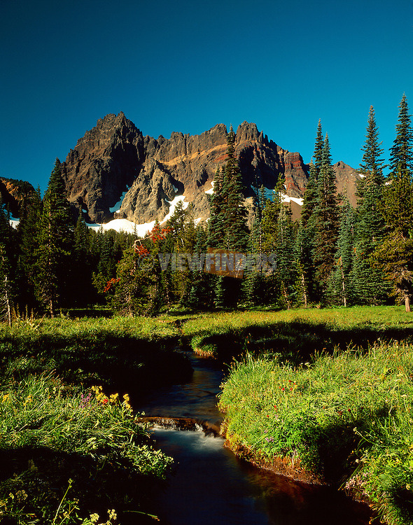 View of Three-Fingered Jack from Canyon Creek Meadow