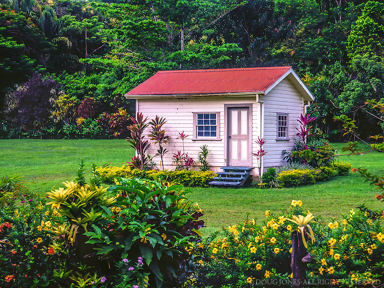 Surrounded by lush, tropical vegetation, this building served as the kitchen for Robert Louis Stevenson's home on Upolu, Western Samoa.