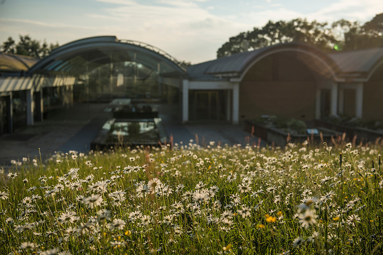 Meadow restoration at the Millenium seedbank. Wakehurst Place - Royal Botanic Gardens, Kew. Ardingly, West Sussex, UK.