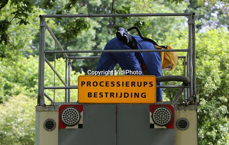 Foto: VidiPhoto<br /> <br /> EDE - Medewerkers van Kuppen Boomverzorging uit het Brabantse Mill verwijderen dinsdag met een grote zuigslang nesten van eikenprocessierupsen uit de bomen in Ede. De processierups, die alleen nestelt in eiken en een bedreiging vormt voor de volksgezondheid, kwam jarenlang alleen in Zuid-Nederland voor, maar heeft zich inmiddels over heel Nederland verspreid. De brandharen van de rups kunnen voor blijvende oogklachten en zelfs blindheid zorgen. De bestrijding is dit jaar later begonnen vanwege het koude voorjaar. Dat is ook de oorzaak dat de overlast minder is dan in andere jaren, hoewel het verspreidingsgebied opnieuw groter is.