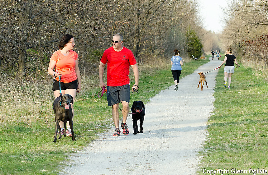 Dog owners are being advised to check themselves and their pets for ticks after spending time outdoors. Marina Harrison (light shorts) and her dog Whistler and friend Enza Piazza (blue top) jog along the Howard Watson Trail.<br /> <br /> Also Mary Hilpert, with Holister and Steve Ruetz with his dog Annie.