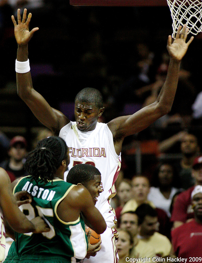 TALLAHASSEE, FL 11/16/09-FSU-JU BB09 CH45-Florida State's Solomon Alabi towers over Jacksonville players  during half action Monday at the Donald L. Tucker Center in Tallahassee...COLIN HACKLEY PHOTO