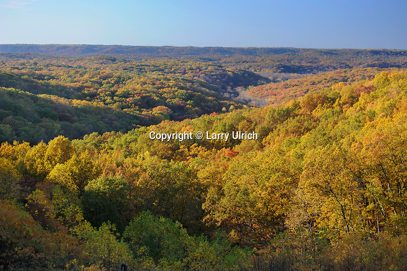 Northern hardwood forest<br />
