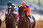 ARCADIA CA - JUNE 04: Beholder #2, with jockey Stevens aboard, defeats Steallar Wins #1 and Victor Espinoza to win the Vanity Mile at Santa Anita Park on June 4, 2016 in Arcadia, California. (Photo by Alex Evers/Eclipse Sportswire/Getty Images)
