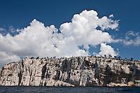 Europe/France/Provence-Alpes-Côte d'Azur/13/Bouches-du-Rhône/ Marseille: Falaise prés de la  de Calanque de l'Oule vers Cassis