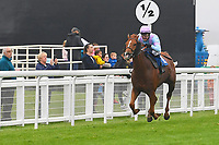 Winner of The Shadwell Racing Excellence Apprentice Handicap Div 1 Another Boy ridden by Charlotte Bennett  and trained by Ralph Beckett  during Horse Racing at Salisbury Racecourse on 14th August 2019