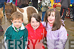 Cian Griffin Camp, Courtney and Caoimhe O'Donoghue Milltown admiring the Shetland ponies at Milltown Fair on Sunday