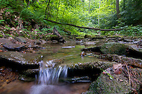 A low angle view of a clear stream running through Shawnee State Forest, in Scioto County, Ohio.