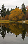 Fall colors reflecting in McArthur Lake in Idaho