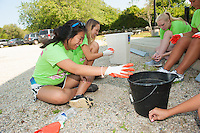 Salve Regina Freshmen Amelia Vess,'19, Sydney Smith and Gabby Schilling along with other Salve Regina volunteers pick weeds at the Potter League For Animals as part of their community service project