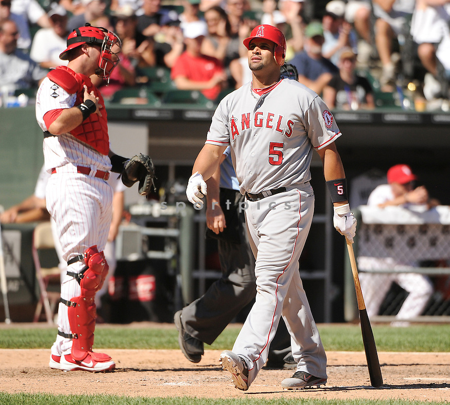 ALBERT PUJOLS (5) of the Los Angeles Angels in action during the Angels game against the Chicago White Sox on August 5, 2012 at US Cellular Field in Chicago, IL. The White Sox beat the Angels 4-2.