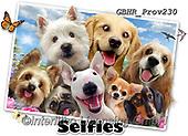Howard, REALISTIC ANIMALS, REALISTISCHE TIERE, ANIMALES REALISTICOS, selfies, paintings+++++Dog Selfie,GBHRPROV230,#a#, EVERYDAY ,elephant,zebra,lion,rhino,