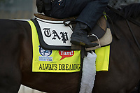 LOUISVILLE, KY - APRIL 28: Horses prepare for the Kentucky Derby and Kentucky Oaks at Churchill Downs, Louisville, KY. (Photo by Eric Patterson/Eclipse Sportswire/Getty Images)