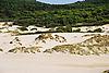 Dunes of Cala Mesquida<br /> <br /> Dunas de Cala Mesquida<br /> <br /> D&uuml;nen der Cala Mesquida<br /> <br /> 1840 x 1232 px<br /> Original: 35 mm