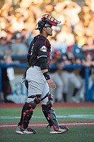 Salem-Keizer Volcanoes catcher Ricardo Genoves (9) during a Northwest League game against the Hillsboro Hops at Ron Tonkin Field on September 1, 2018 in Hillsboro, Oregon. The Salem-Keizer Volcanoes defeated the Hillsboro Hops by a score of 3-1. (Zachary Lucy/Four Seam Images)