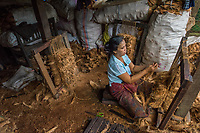 Myanmar, Burma, Bago. Daw Myint San, makes coconut husk mats. <br /> She buys coconut husks for 60 cents a bag and received orders that she fulfills. These are usually used to sit on in monasteries or homes. She can make one mat an hour, about 10 a day although it&rsquo;s usually closer to 8 as she has to also cook, clean &amp; take care of the children. When her husband and son help her they can make about 30 a day. Then they make about $15 a day, which helps towards their 3 children. Model released, MR-Myanmar-127