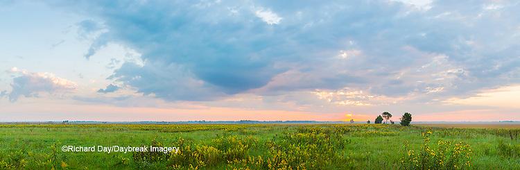 63893-03914 Sunrise over prairie Prairie Ridge State Natural Area  Marion Co. IL