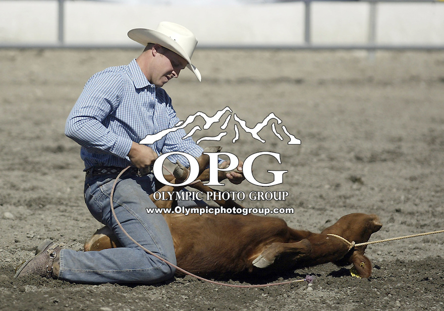 27 Aug 2009:  Ty Sturza from Hermiston, Oregon scored a 13.5 in the Tie Down roping competition at the Kitsap County Thunderbird PRCA Pro Rodeo in Bremerton, Washington.