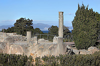 Ruined fluted columns, Domus, the largest house in the Roman city of Empuries, 1st century BC - 1st century AD, Sant Marti d´Empuries, Girona, Spain. Picture by Manuel Cohen