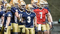 2017 Notre Dame Football