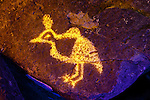 Quail Petroglyph #2, Three Rivers Petroglyph Site, New Mexico