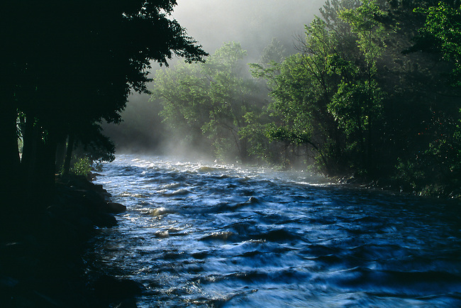 Mist fills the warm morning air along the Big Thompson River in Estes Park, Colorado, Rocky Mountains