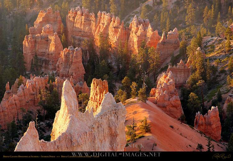 Bryce Canyon Hoodoos at Sunrise, Sunrise Point, Bryce Canyon National Park, Utah