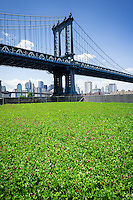 The Manhattan Bridge looms behind the John Street Pasture in the Dumbo neighborhood of Brooklyn in New York  seen on Saturday, June 7, 2014. The 6000 square foot field of blooming clover is a temporary public art project by the artist Andrea Reynosa. The pop-up installation is on a site ear-marked for luxury apartments and an extension of Brooklyn Bridge Park. The John Street Pasture is scheduled to be dug up sometime in mid-summer as development progresses. The site was a former parking lot for the Con Edison company. (© Richard B. Levine)