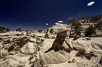 Hoodoos and pine trees co-mingle in the Lybrook Badlands of northwestern New Mexico.