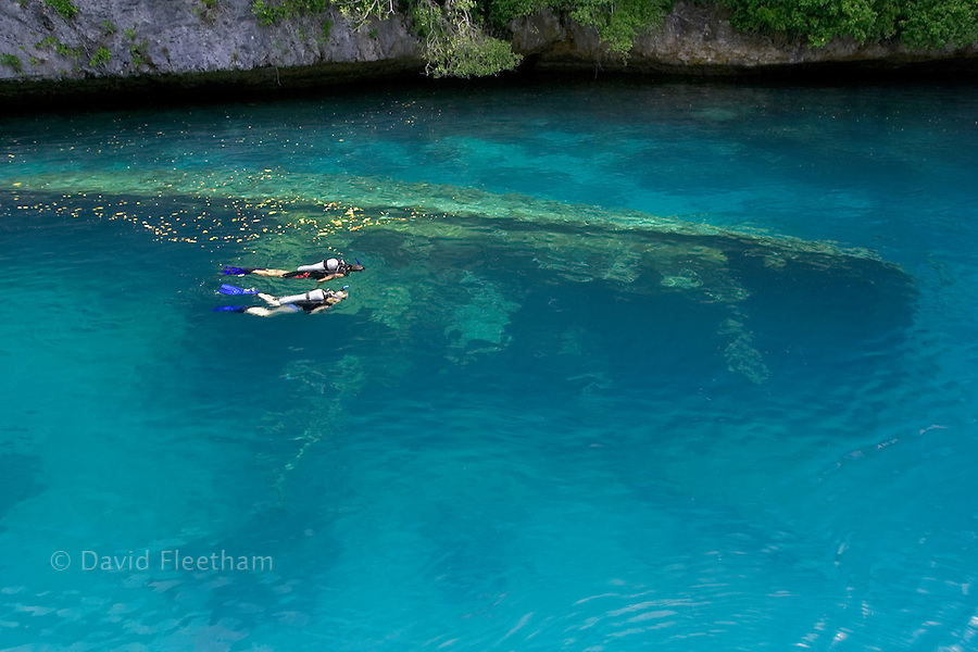 Couple (MR) exploring a shallow wreck, Palau, Micronesia.