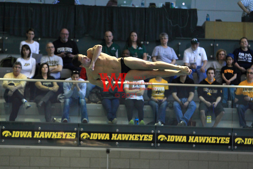 The University of Minnesota men's Swimming and Diving Team compete at the 2015 Men's Big Ten Swimming and Diving Championships. Iowa City, IA. February 26, 2015