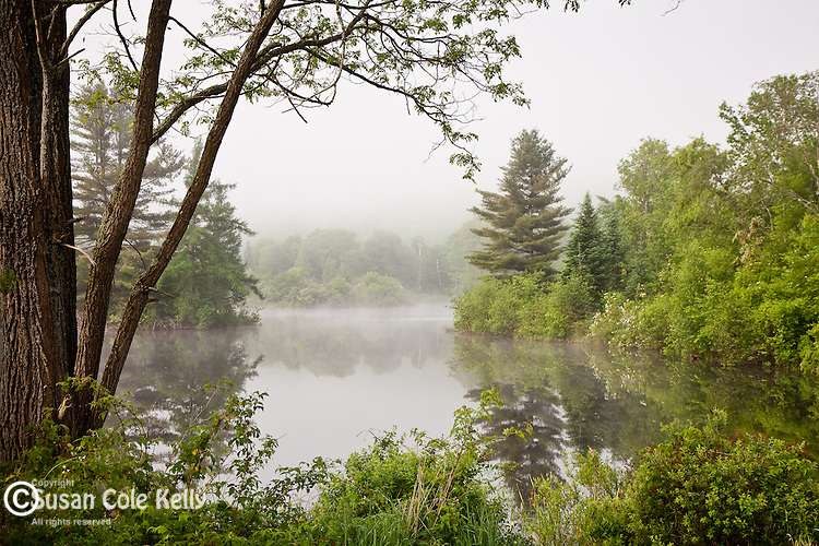 Clearing fog on Coffin Pond in Sugar Hill, NH, USA