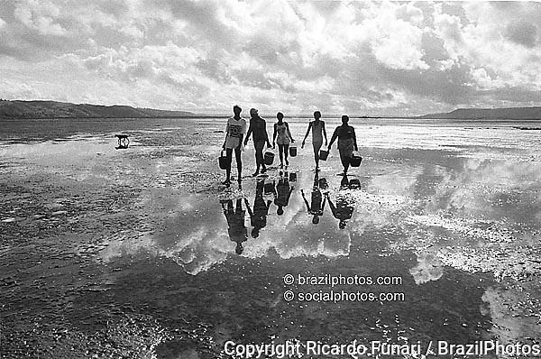 Shellfish hunters. City: Maragogipe; State: Bahia; Brazil. Job done exclusively by women.