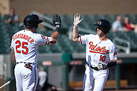 Salt River Rafters shortstop Steve Wilkerson (10), of the Baltimore Orioles organization, is congratulated by teammate Anthony Santander (25) after hitting a home run during an Arizona Fall League game against the Mesa Solar Sox on October 30, 2017 at Salt River Fields at Talking Stick in Scottsdale, Arizona. The Solar Sox defeated the Rafters 8-4. (Zachary Lucy/Four Seam Images)